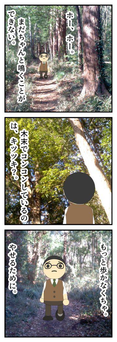 今年初のウグイスの鳴き声は小倉の森で聞きました。