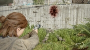 The Last of Us Part II_20200619232037 (1005)
