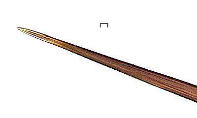 シロオビドクガの毒針毛の針の先端