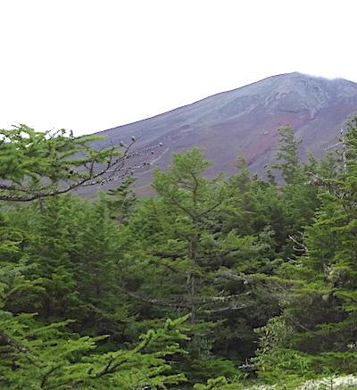 富士山を臨む