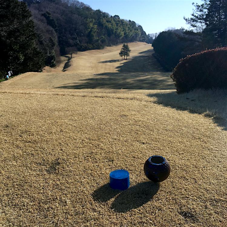 ニューセントラルゴルフ倶楽部@宇都宮市下田原町 5 コース