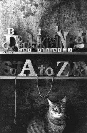 CAT THEATER vol 21