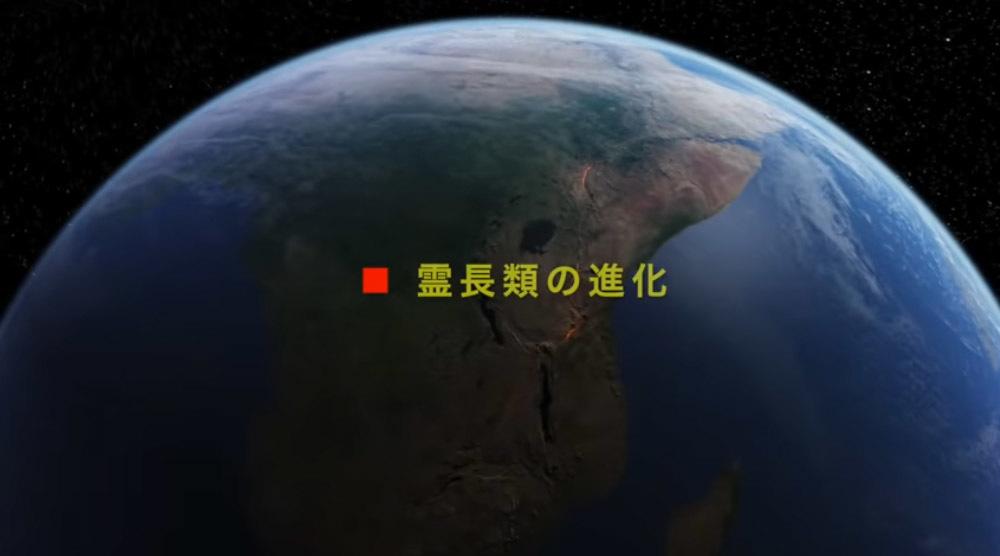 20071732.jpg