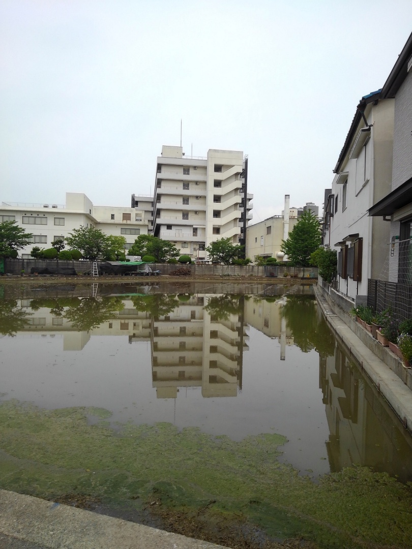 no01_2田水