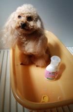 200323 Roseうち風呂デー1