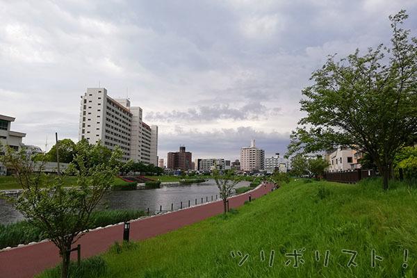 旧中川水辺公園_001