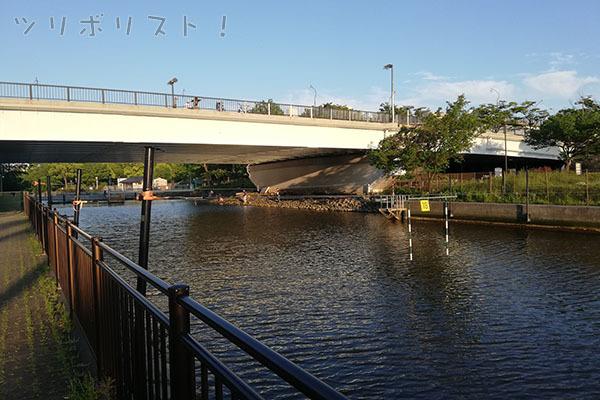 新左近川親水公園_002