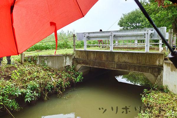 旧川ふるさと公園013