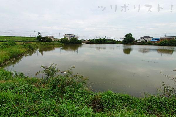 旧川ふるさと公園019