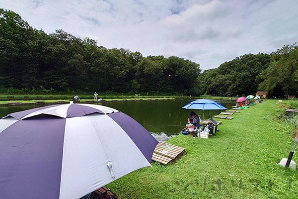前山の池083