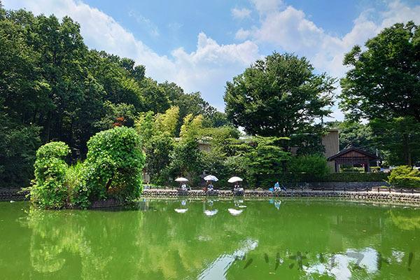 赤塚溜池公園026