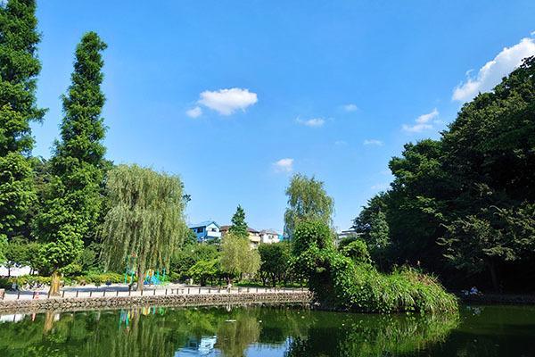 赤塚溜池公園031