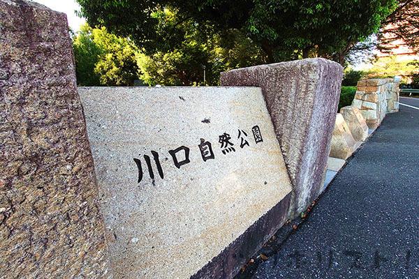 川口自然公園001