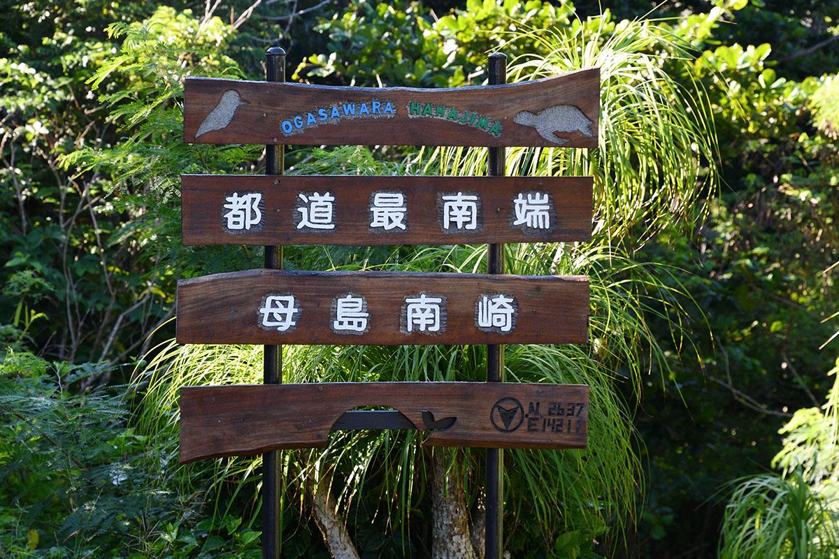 hahajima_201108_d500_9608_1200.jpg
