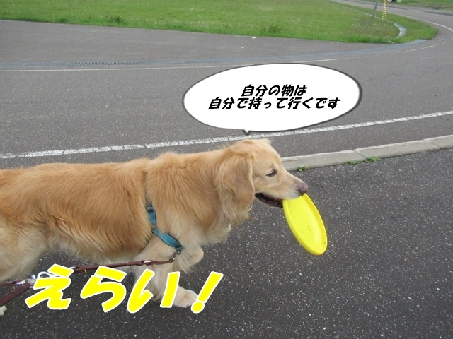 20200619IMG_6151.jpg