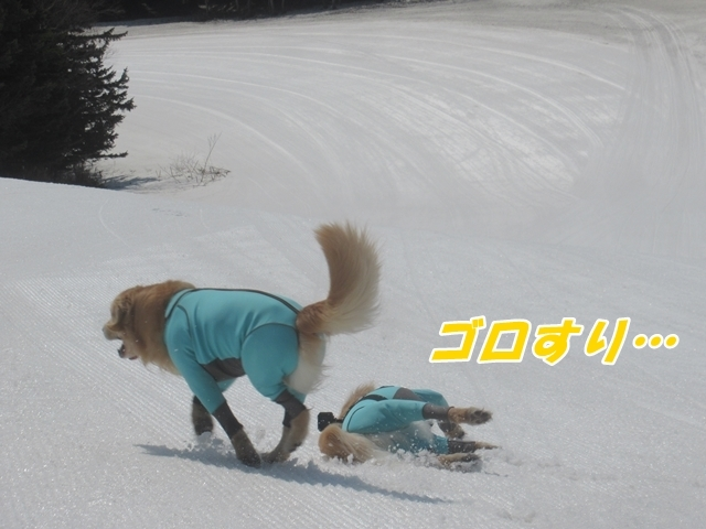 20210327IMG_7640.jpg