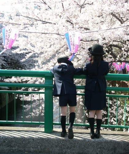 目黒川の花見風景-06D 05qqt