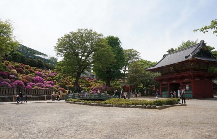 1.根津神社:楼門前広場-01D 2104qq