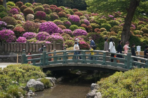 2.根津神社:神橋-03D 2104q