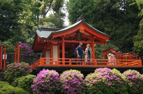 5.根津神社:乙女稲荷神社-26D 2104qr