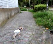 200803(3).jpg