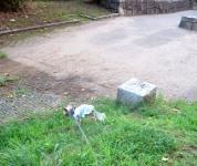 200803(8).jpg