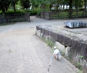 200803(9).jpg