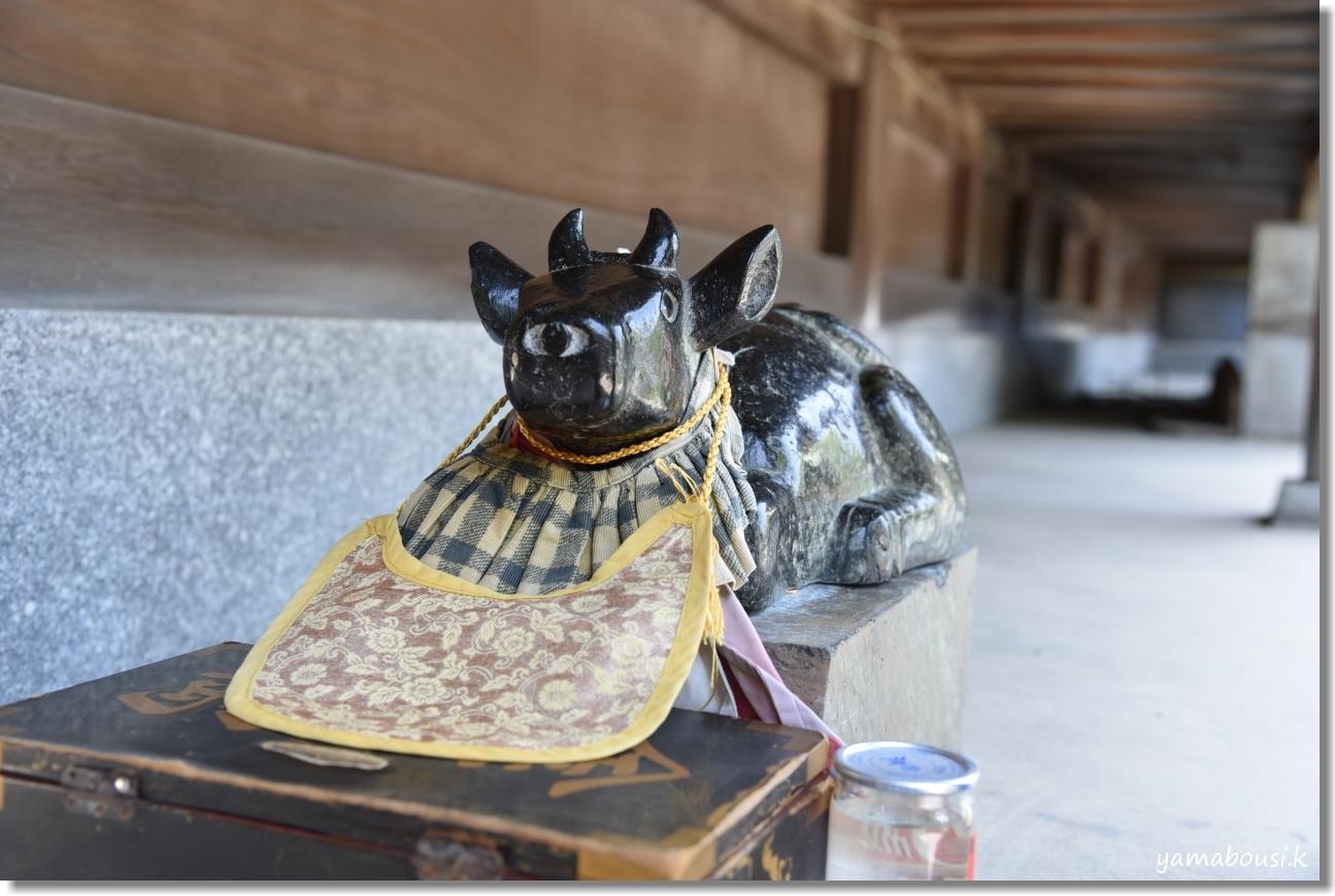 宮地嶽神社(2020)菖蒲が咲く頃に 9