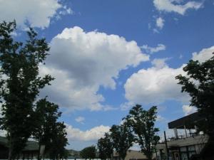 安満遺跡公園 (2)