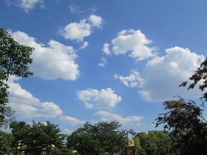 城跡公園 (6)