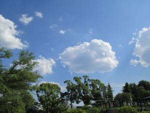 城跡公園 (10)