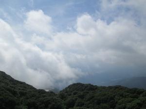 伊吹山 (7)