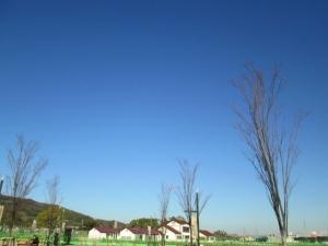 安満遺跡公園5-1