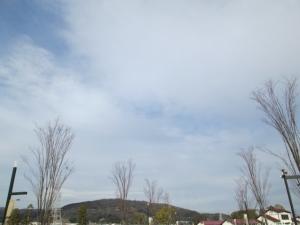 安満遺跡公園11 -3