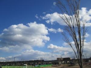 安満遺跡公園12 -14