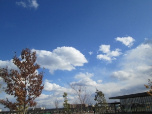 安満遺跡公園12 -19