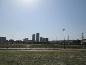 安満遺跡公園 15-1
