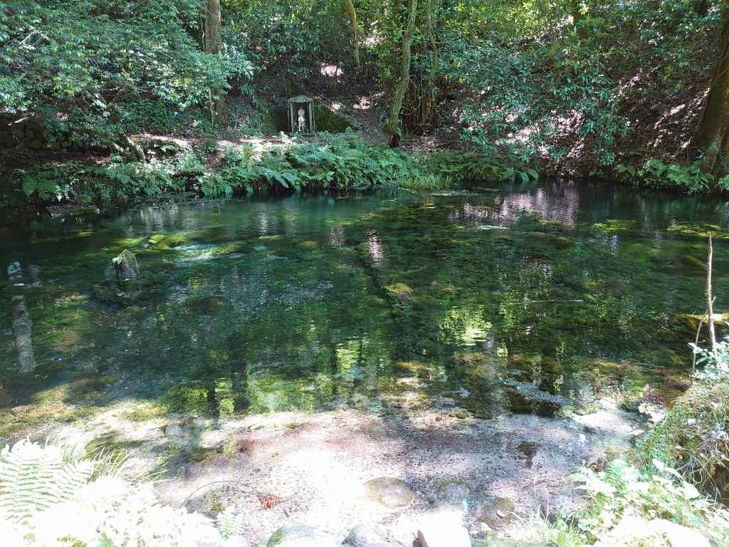 「池山水源(熊本県産山村)」名水百選!透明度の高い毎分30トンの湧水は13.5度