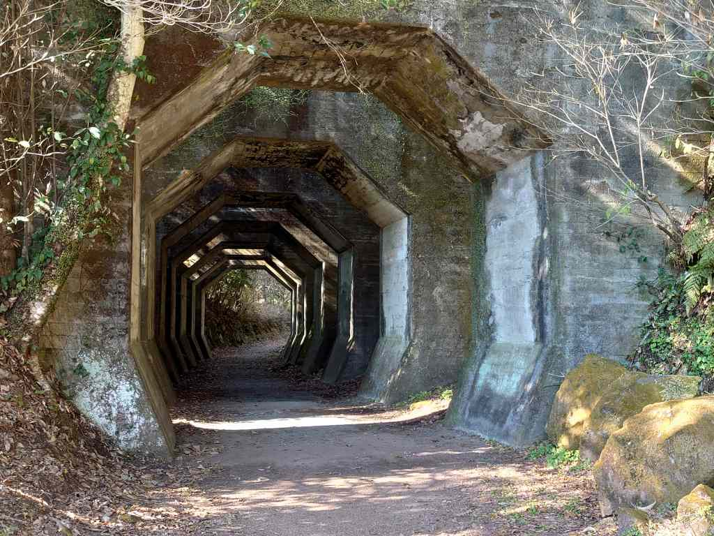 「八角トンネル(熊本県美里町)」不思議な形のトンネルは熊延鉄道の遺構でした