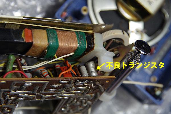 IMGP8959_600X401.jpg