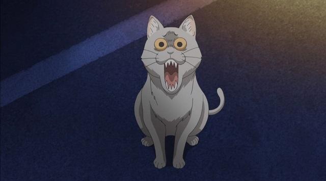 「宇崎ちゃんは遊びたい!」 ウザキャット