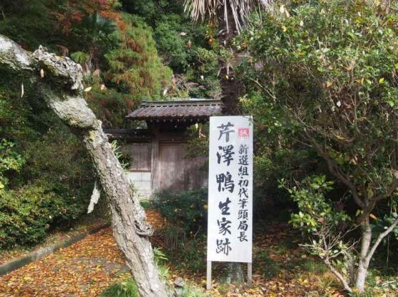 serizawa01.jpg