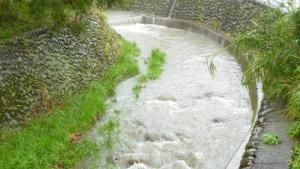 水が増えた、2020.4.18の小川。a