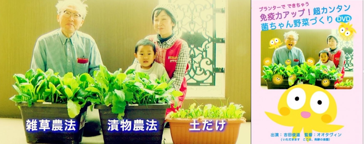 できた野菜とDVD