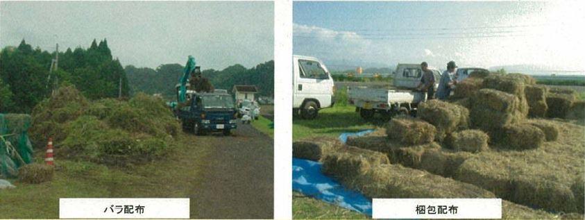 河川土手の刈草